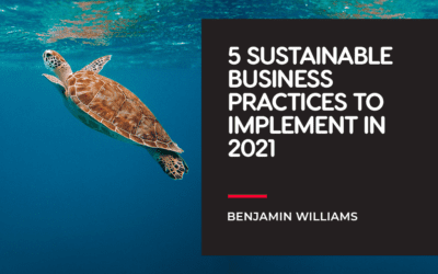 5 Sustainable Business Practices to Implement in 2021